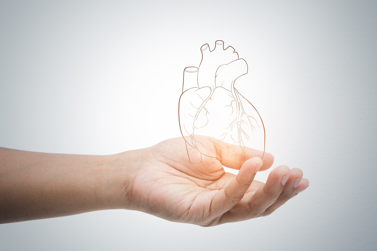 A hand holding an illustration of a heart