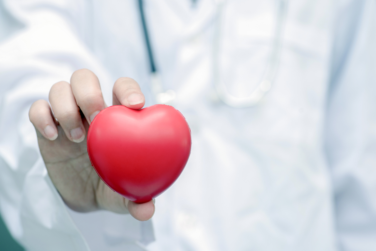 A doctor holding a heart